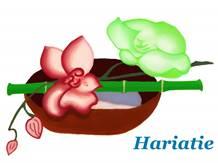 Hariatie